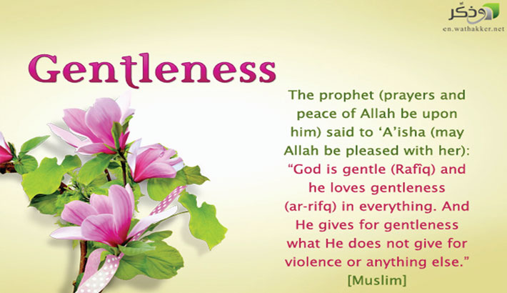 Islam preaches gentleness while calling people to Allah
