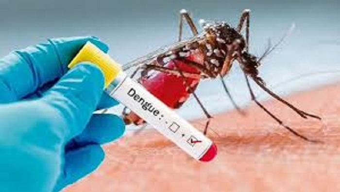 Govt responses shrink dengue severity with zero death, fewer cases this year