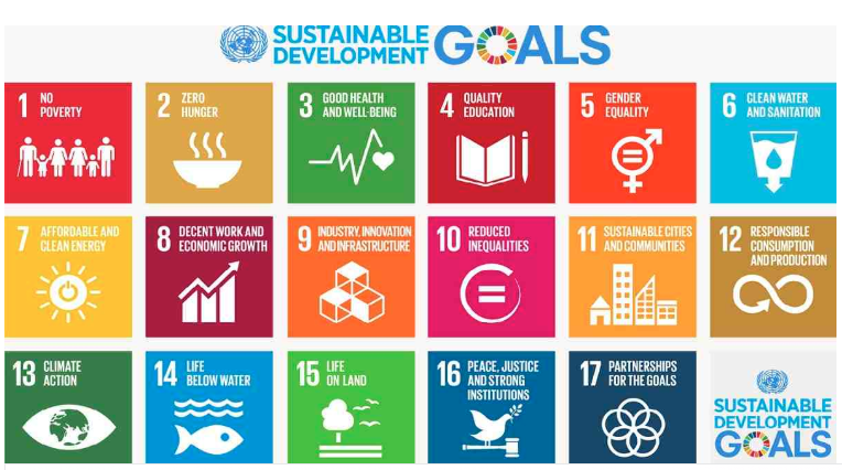 Private business sector still away from reaching SDGs: UN report