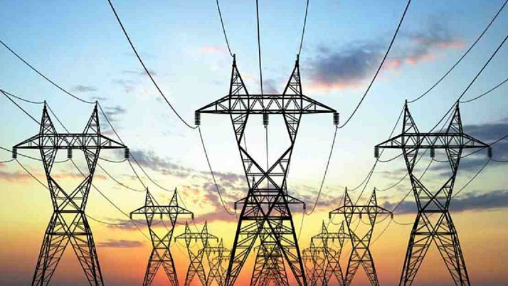 Considering time extension for delayed electricity bills without surcharge: Secretary