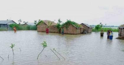 Sunamganj Flood: Fisheries sector suffers a loss of 'TK 21.45 cr'