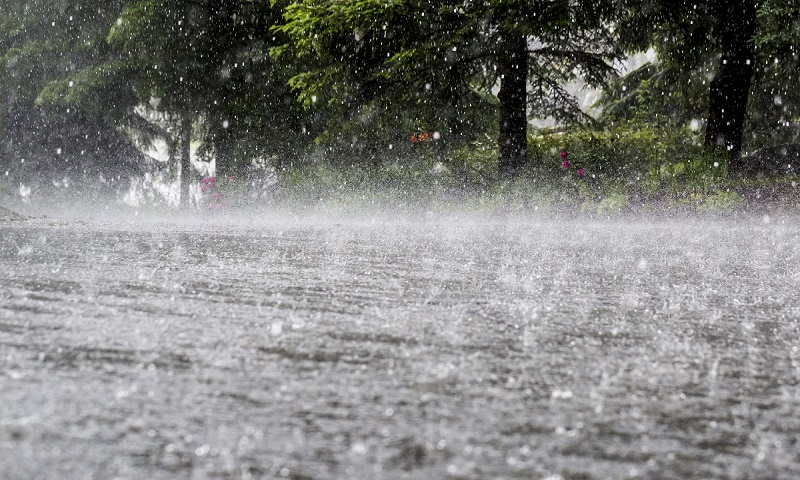 7 dead due to heavy rains in Karachi; PMD predicts more showers for next 2 days