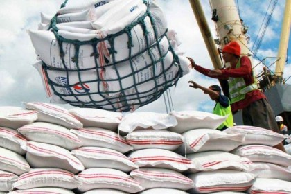Govt plans to import rice