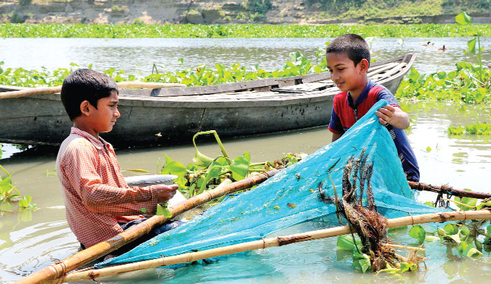 Two boys are catching fish with a traditional net