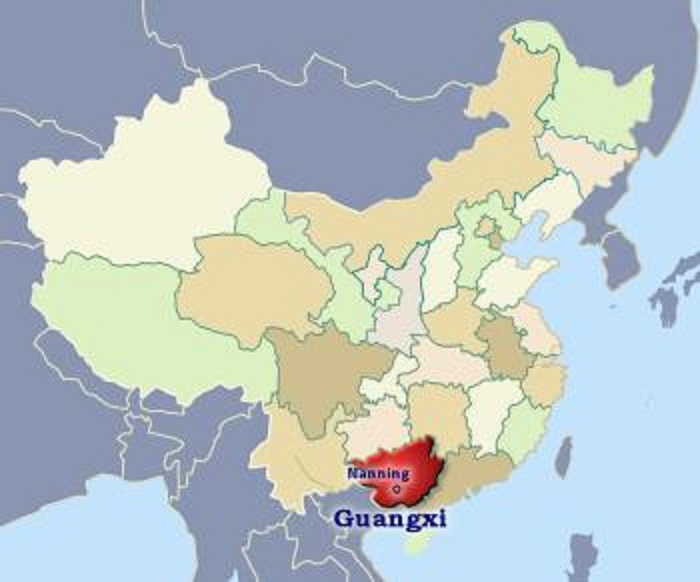 Five killed in China's Guangxi road accident