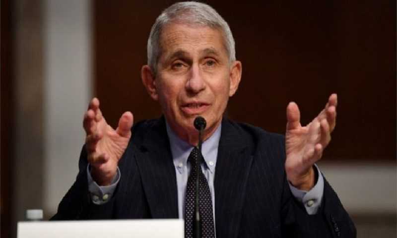 Coronavirus: White House targets US disease chief Dr Anthony Fauci