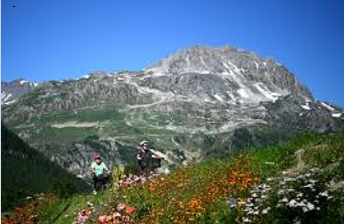 French, Dutch climbers die in French Alps fall