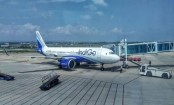 Coronavirus: India's biggest airline IndiGo to cut 10pc of staff