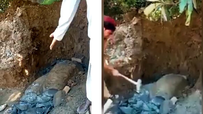 Maulvi orders, ancient Buddha statue goes 'under the hammer' in Pakistan