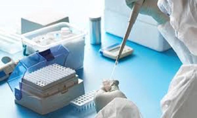 Scientists develop safe, rapid COVID-19 antibody test
