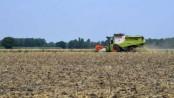 German farm hit by virus outbreak