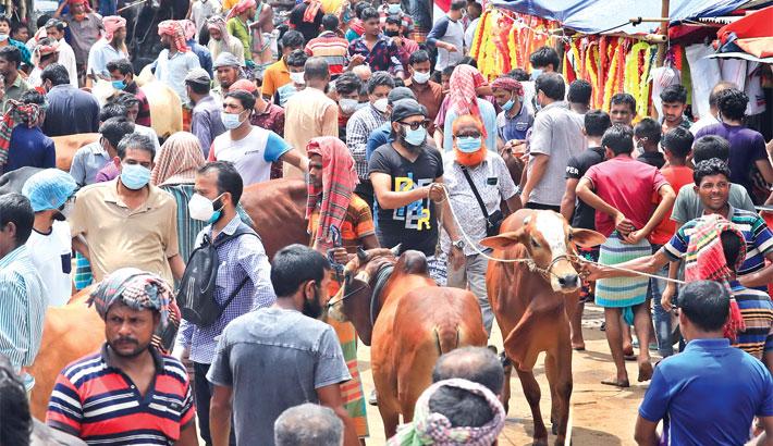 Sale of sacrificial animals lacklustre despite huge supply