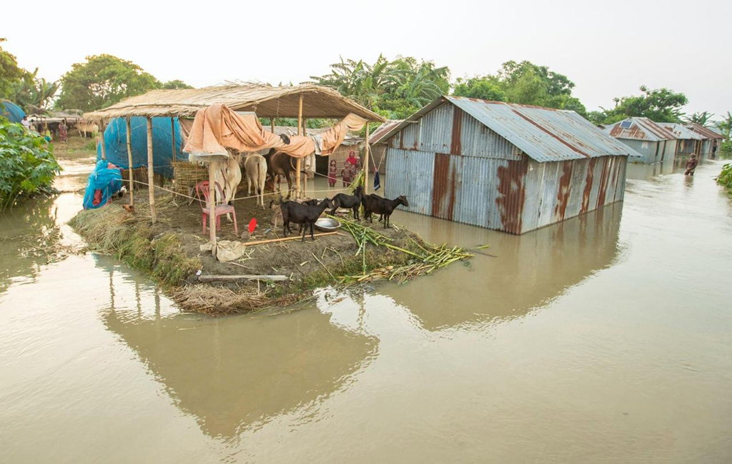 Flood situation in Ganges basin gets better