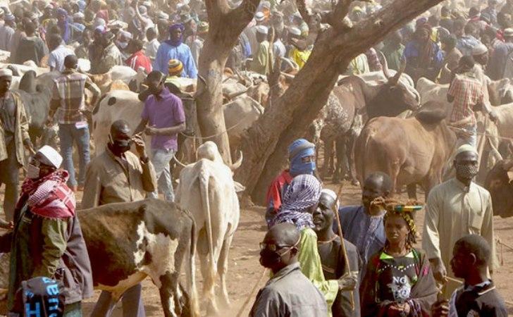 Gunmen kill about 20 in attack on cattle market in Burkina Faso