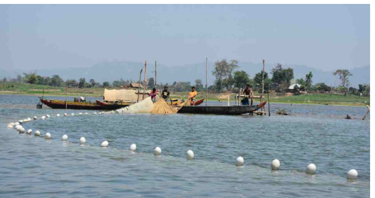 Fishing resumes in Kaptai Lake after 90-day ban