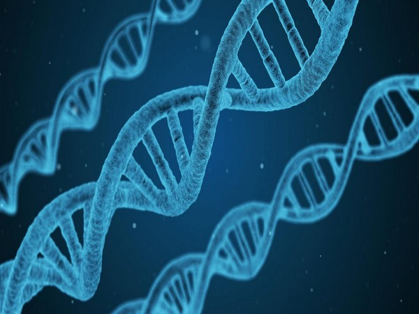 China collecting DNA samples of millions, experts suspect developing tool for genetic surveillance
