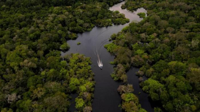 Global warming makes tropical soils leak CO2: study