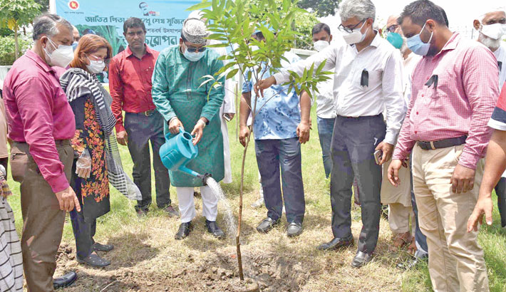 Inauguration a tree plantation programme
