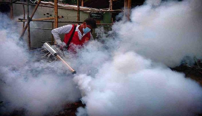 DNCC drive: Aedes larvae found at 67 establishments