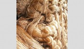 Jute production falls in country