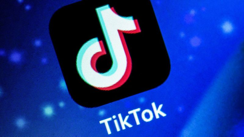 TikTok in race to remove widely shared suicide clip