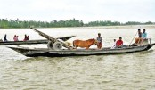 A man was seen crossing the Dharla River by boat along with his horse and horse-cart
