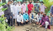 Bangladesh Council of Scientific and Industrial Research (BCSIR) pose for a photo after planting a sapling
