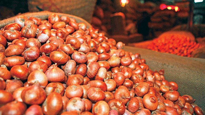 Onion price may spike again