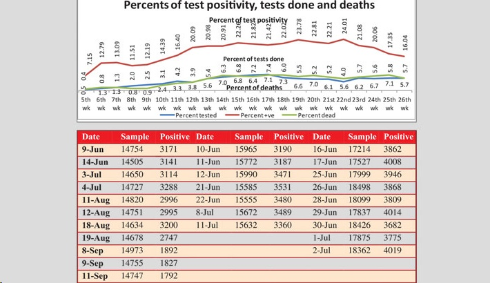Association between Covid-19 Test, Test Positivity and Death