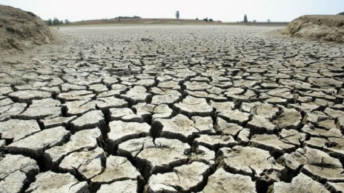 Climate Week: World split on urgency of tackling rising temperatures, poll suggests