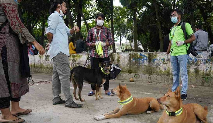 HC withholds hearing dog relocation petition