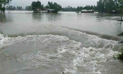 15,000 hectares cropland flooded in Kurigram