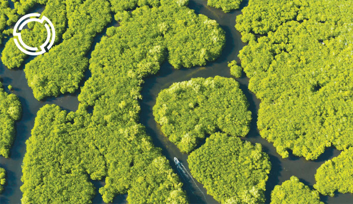 Nations commit to reverse nature loss by 2030