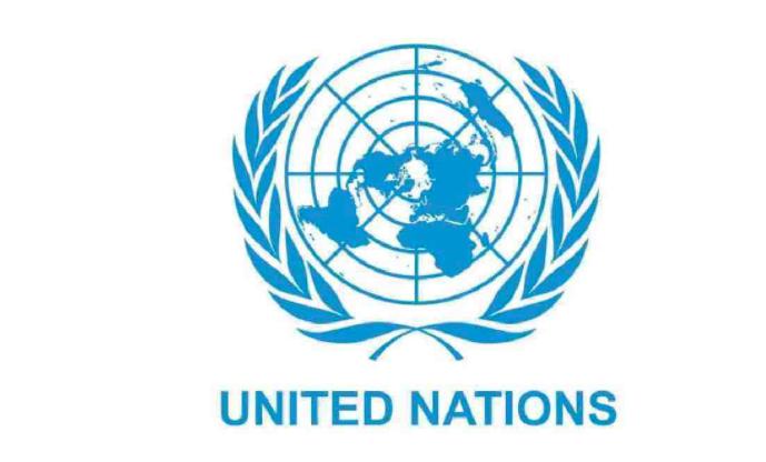 Stranded migrants need safe return: UN