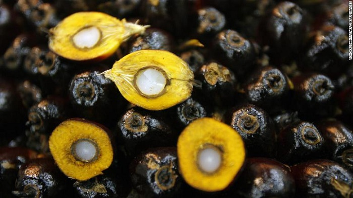 US restricts palm oil imports from Malaysia over alleged forced labor abuses