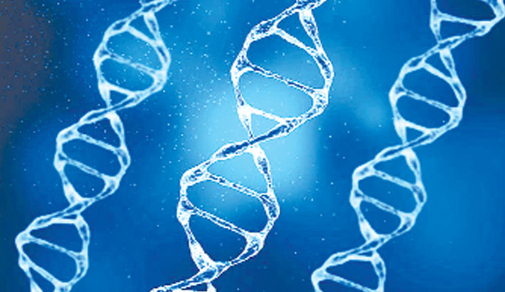 DNA from Neanderthals can make corona more severe