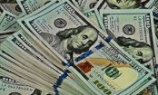 Forex reserves maintain strong growth