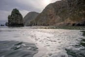 Scientists detect 'mass death' of sea life off Russia's Kamchatka