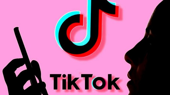 TikTok ban ruling to be made after US election
