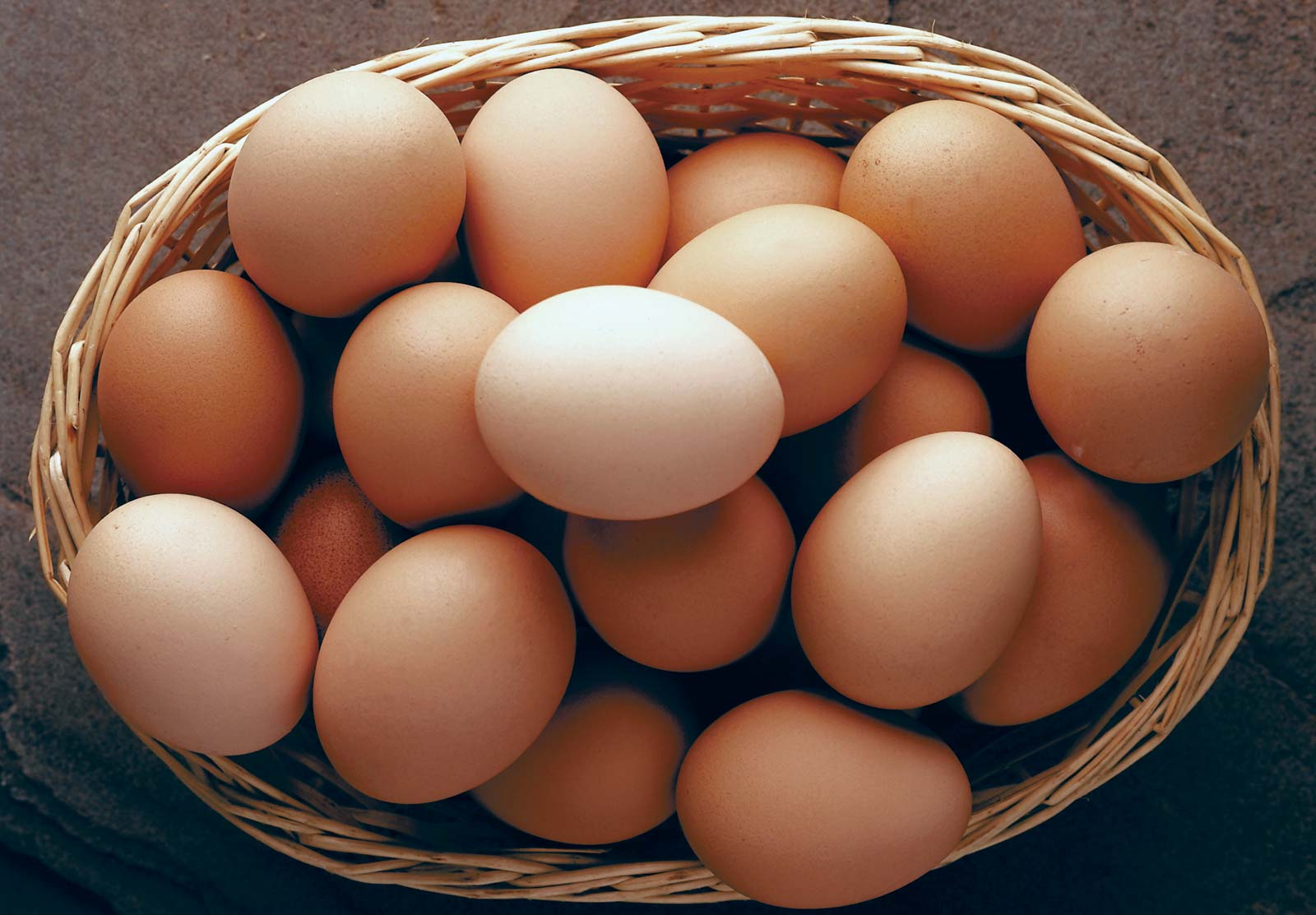 Egg consumption reduces risk of COVID-19 transmission: experts