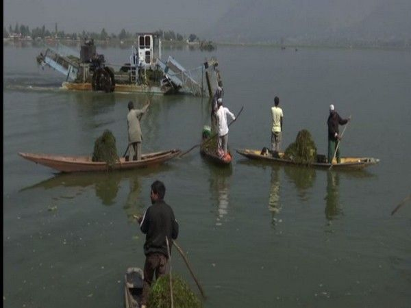 Dal Lake in Srinagar undergoes cleaning ahead of winter tourism