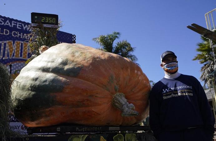 Pumpkin weighing 2,350 pounds wins California contest