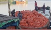 24 tons of onion imported from Myanmar