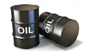 Oil prices steady