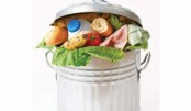Food waste: A Devastating Delicacy