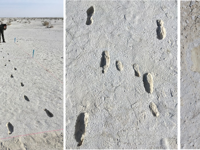 13,000-Year-Old Human Footprints Found in New Mexico