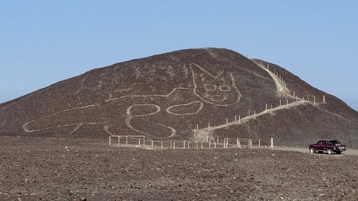 Large 2,000-year-old cat discovered in Peru's Nazca lines