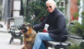 Biden win sees 'First Dogs' return to White House