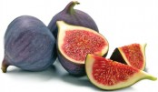 Fig cultivation gains traction