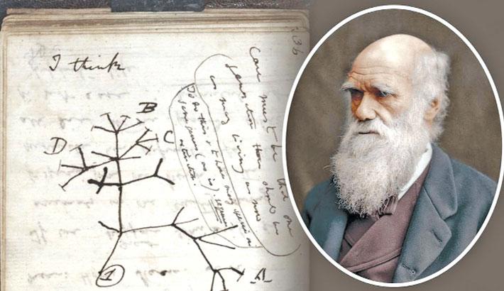 Darwin notebooks 'stolen' from Cambridge University